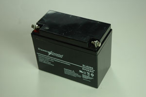 SLA 20AH 6 Volt Battery